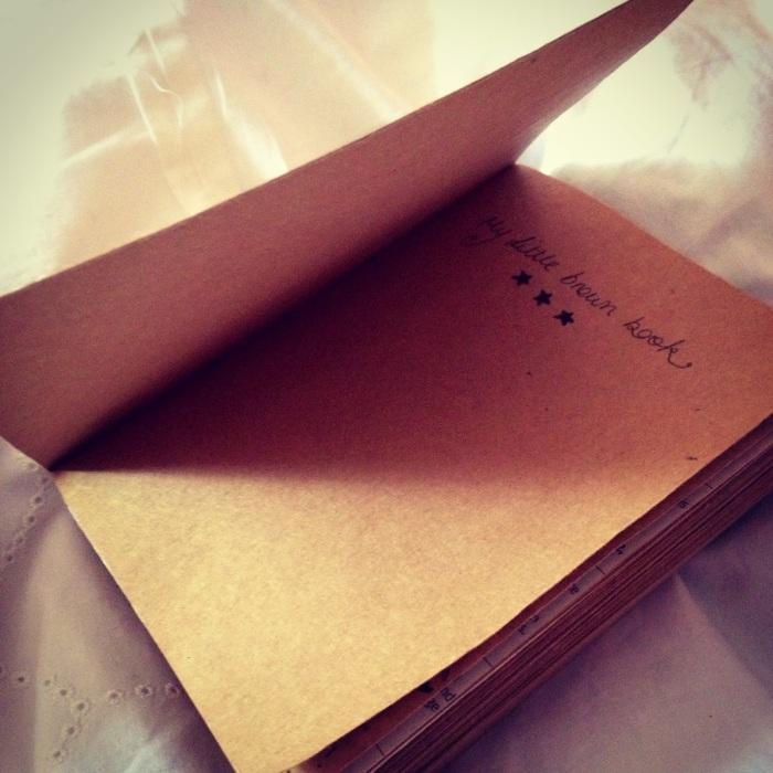 little brown book